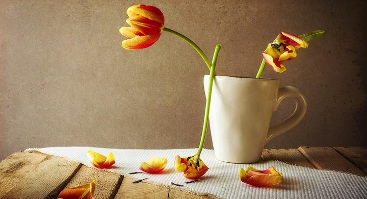 Wiltedflowers