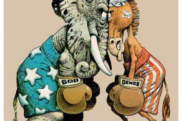 Elephant Donkey Boxing
