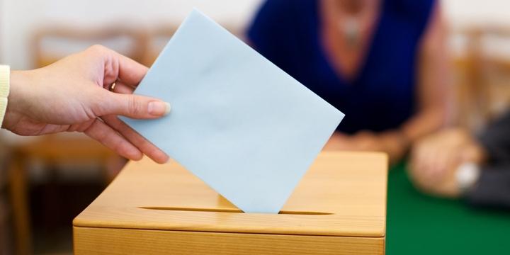 Let My People Vote