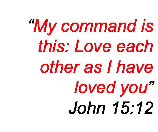 John 15-12