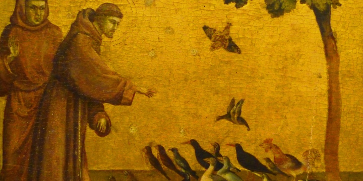 St Francis Feeding The Birds